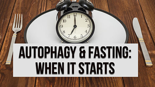 When does Autophagy Start