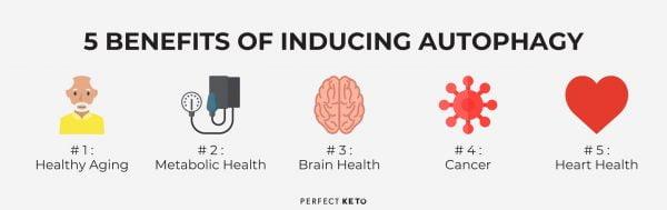 benefits of autophagy